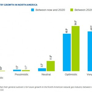 FIGURE 5 OUTLOOK ON INDUSTRY GROWTH IN NORTH AMERICA