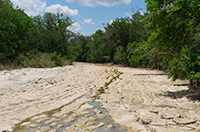 To the Last Drop: Wasting Water Endangers Texas