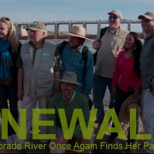 RENEWAL – A Reborn Colorado River Once Again Finds Her Path to the Sea