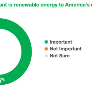 How important is renewable energy to America