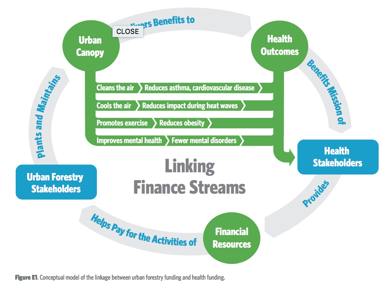 Figure E1. Trees and Public health. Conceptual model of the linkage between urban forestry funding and health funding.